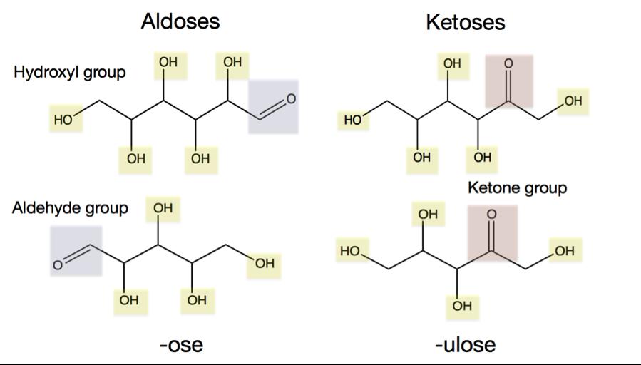 aldoseketose