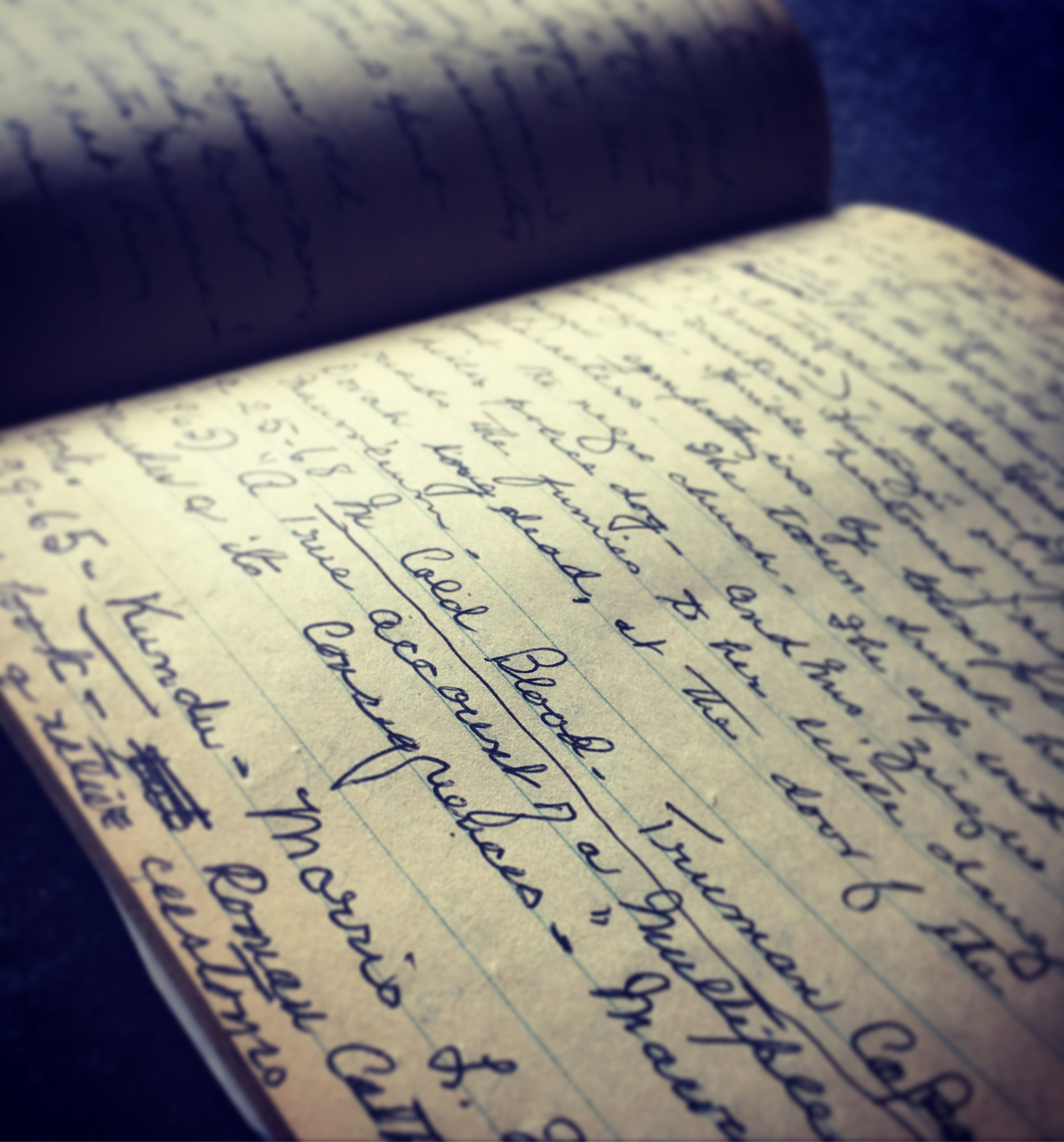 An Unearthed Journal Joins Social Media